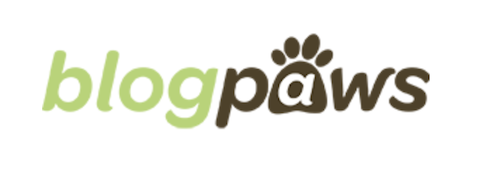 creative newsletter names blog paws